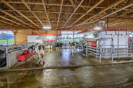 Lely A4 and central unit