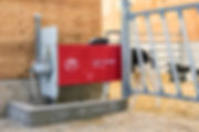 Lely Calm calf feeder with dairy cow calves in a pen