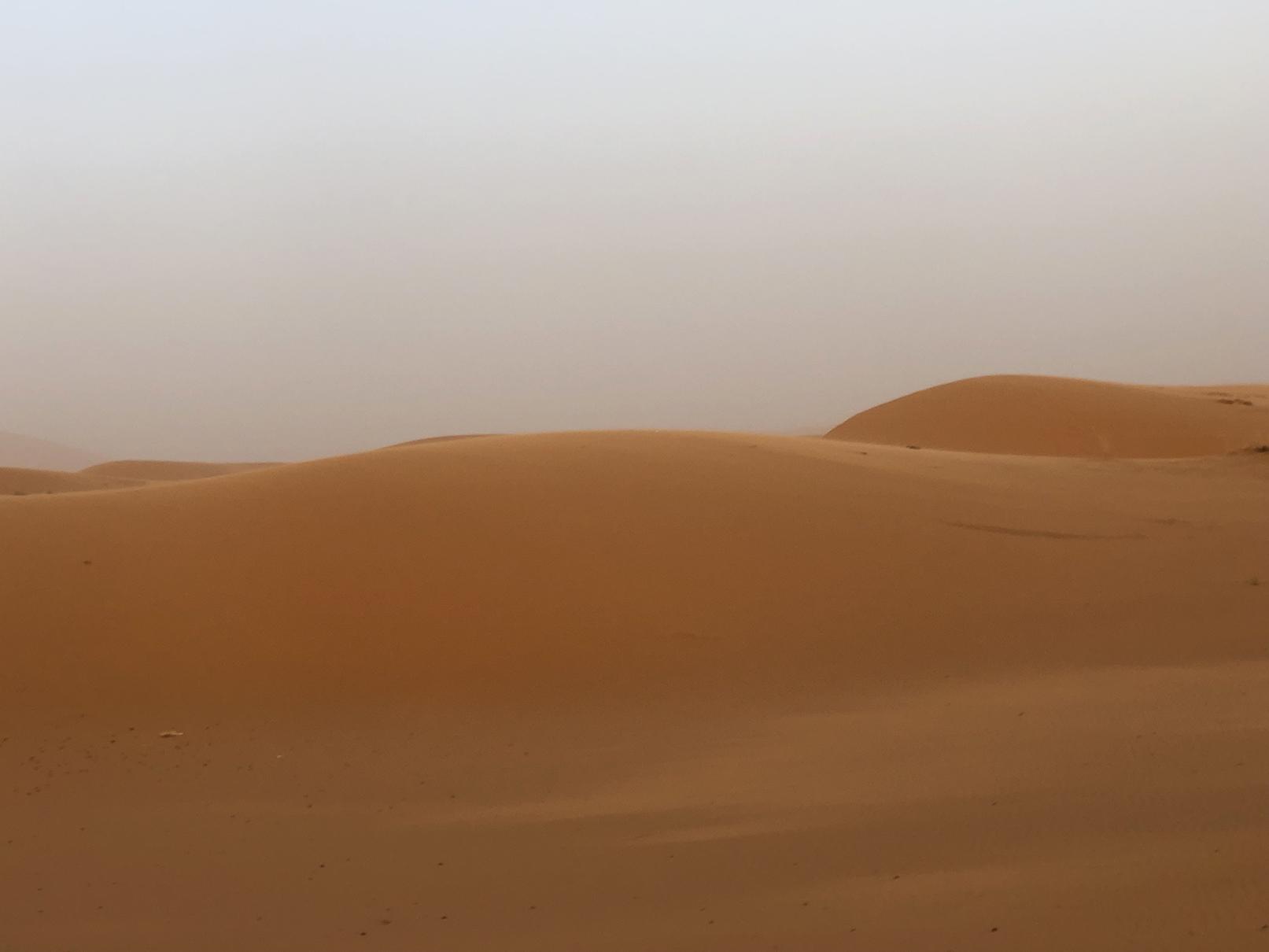 Desert Dawn 2