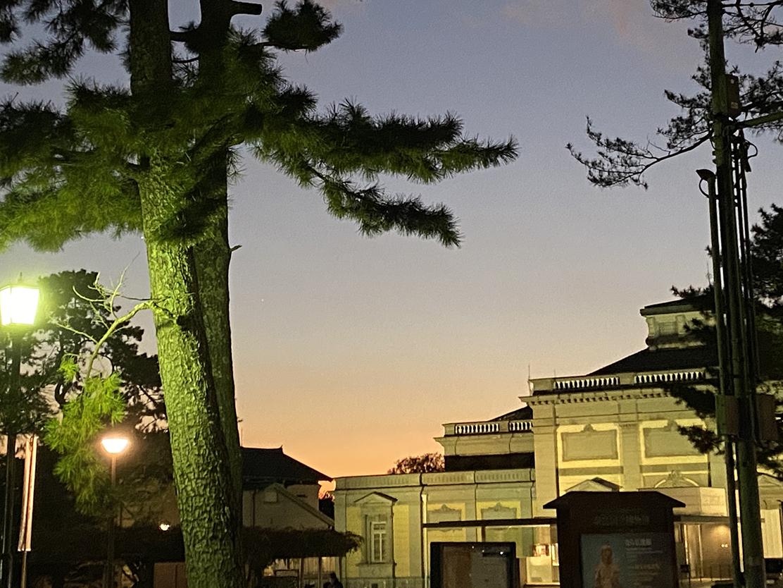Nara Park Twilight