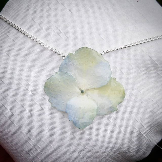 🌸 NEW!!! SINGLE REAL HYDRANGEA FLOWER P