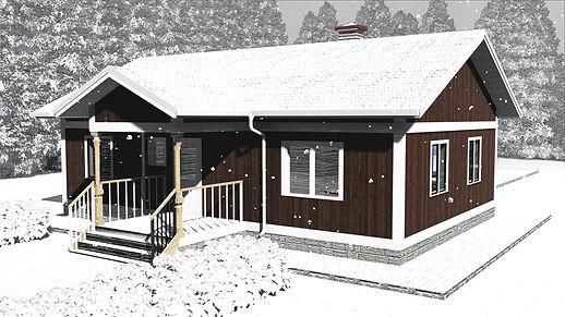 Общий вид каркасного дома 8х12
