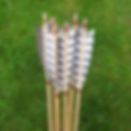 ANDY'S ARROWS SQ.JPG