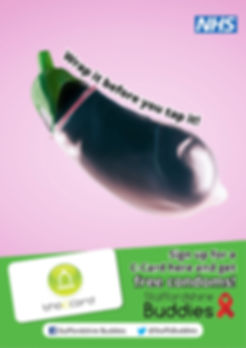 Aubergine poster interactive Staffs Budd