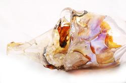 Mucosa details