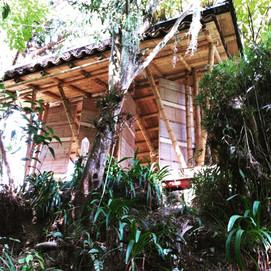 Bamboo Kiosk, Colombia