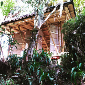 Building Local, Earth and Bamboo Design Build Workshops; Colombia