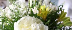 Blumen Details 1_1904x798