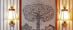 Stammbaum_1904x798