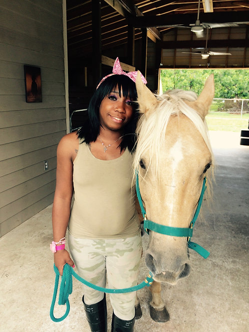 equine assisted learning package 1