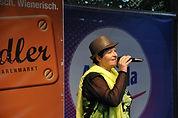 Mein Wienerlieder-Repertorie