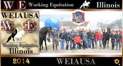 Working Equoitation Illinois3.jpg