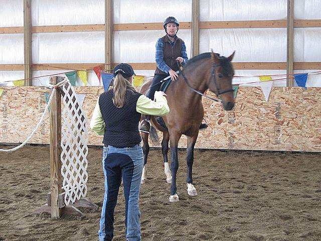 Working Equoitation Colorado2.jpg