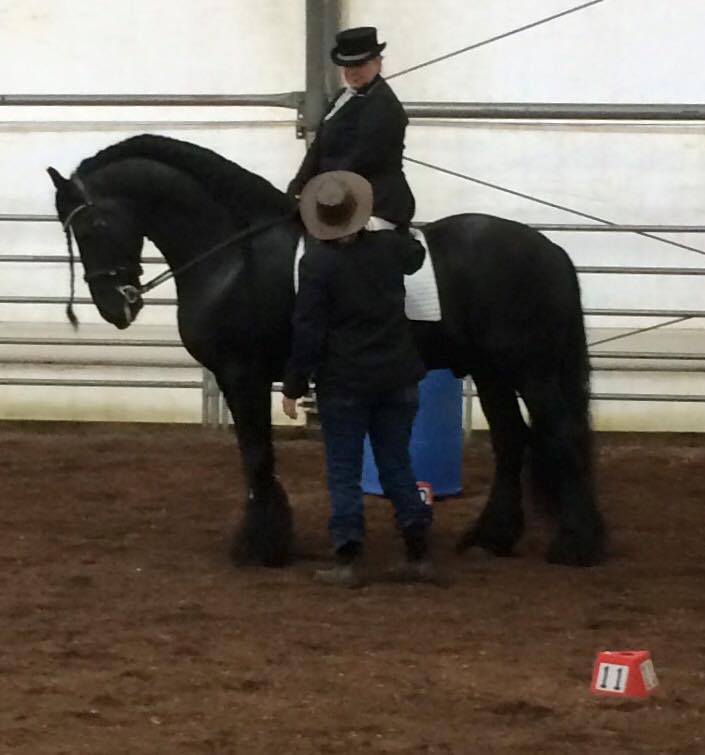 Working Equoitation Washington2.jpg