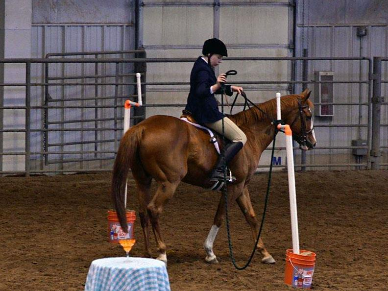 Working Equoitation Colorado1.jpg