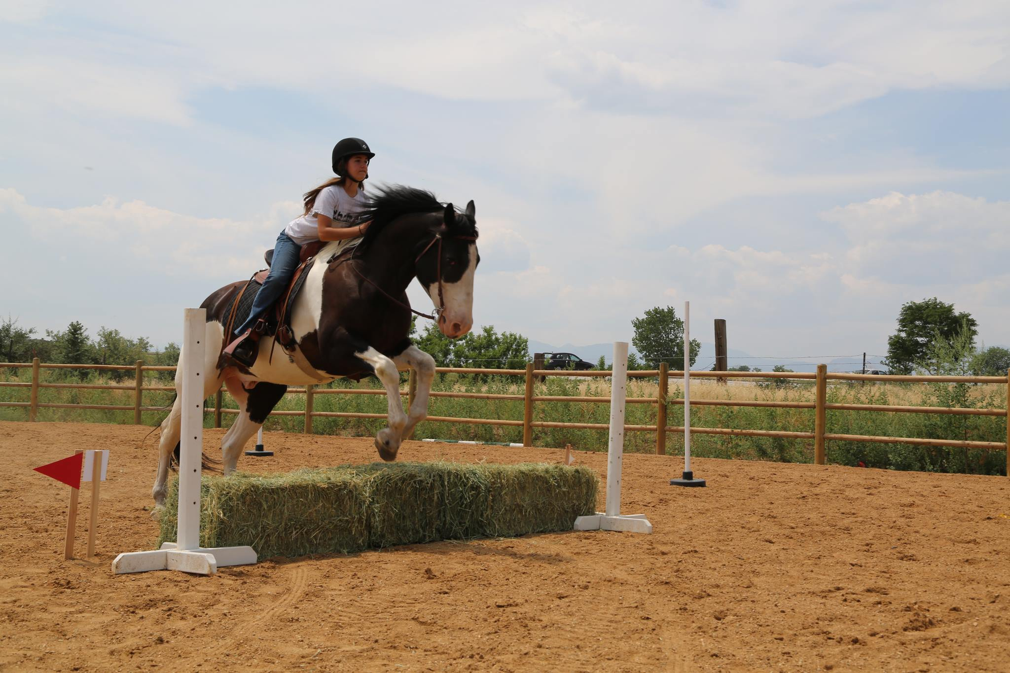 Working Equoitation Colorado4.jpg