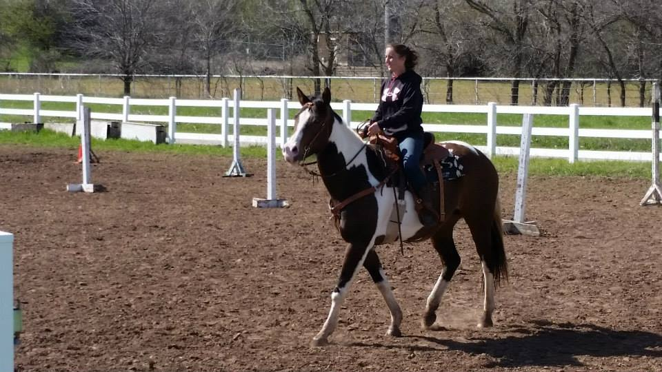 Working Equoitation Oklahoma2.jpg