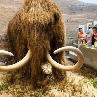 """Climate change: scientists who want to """"resurrect"""" mammoths to save the planet."""