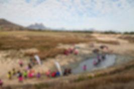 events winelands muldersvlei estate