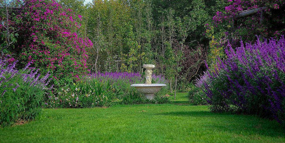 Muldersvlei Estate gardens