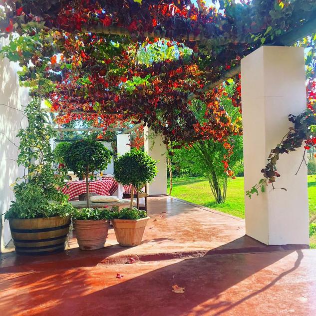 Western cape Stellenbosch Winelands Muldersvlei Estate accommodation 4.jpg