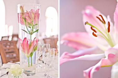 Muldersvlei Estate Winelands venue wedding flowers 2.jpg