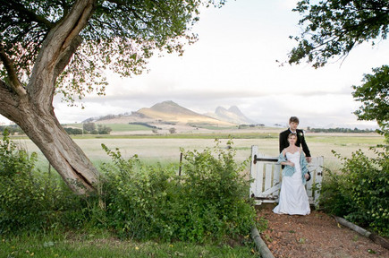 Muldersvlei Estate Winelands wedding 7.jpg