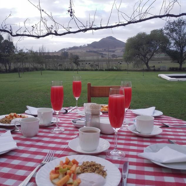 Stellenbosch Winelands Muldersvlei Estate accommodation breakfast.jpg