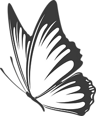 Butterfly - Gray.png