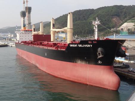 M/V Orient Delivery  - P.P. Survey