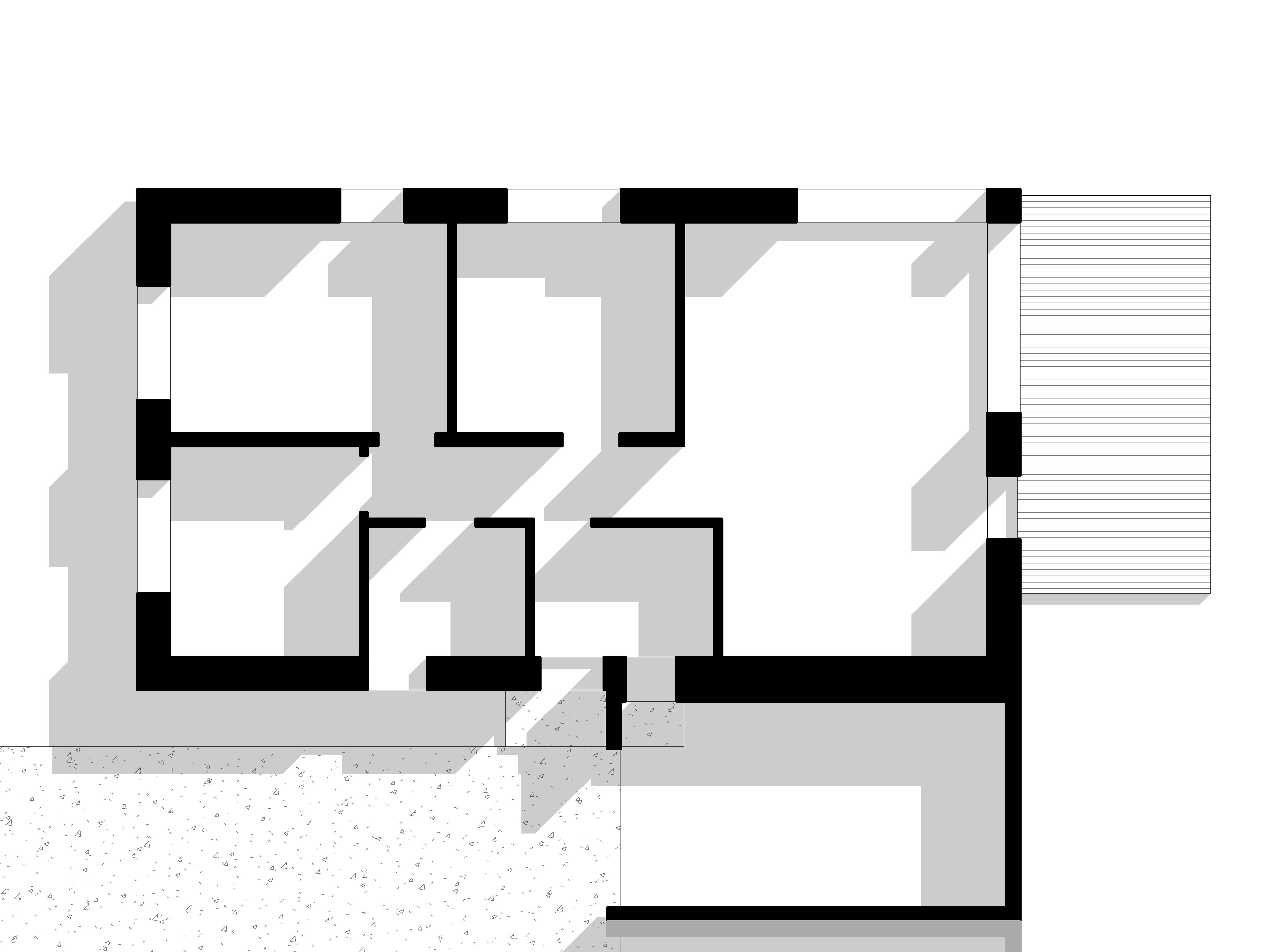 1a-planas-2jpg