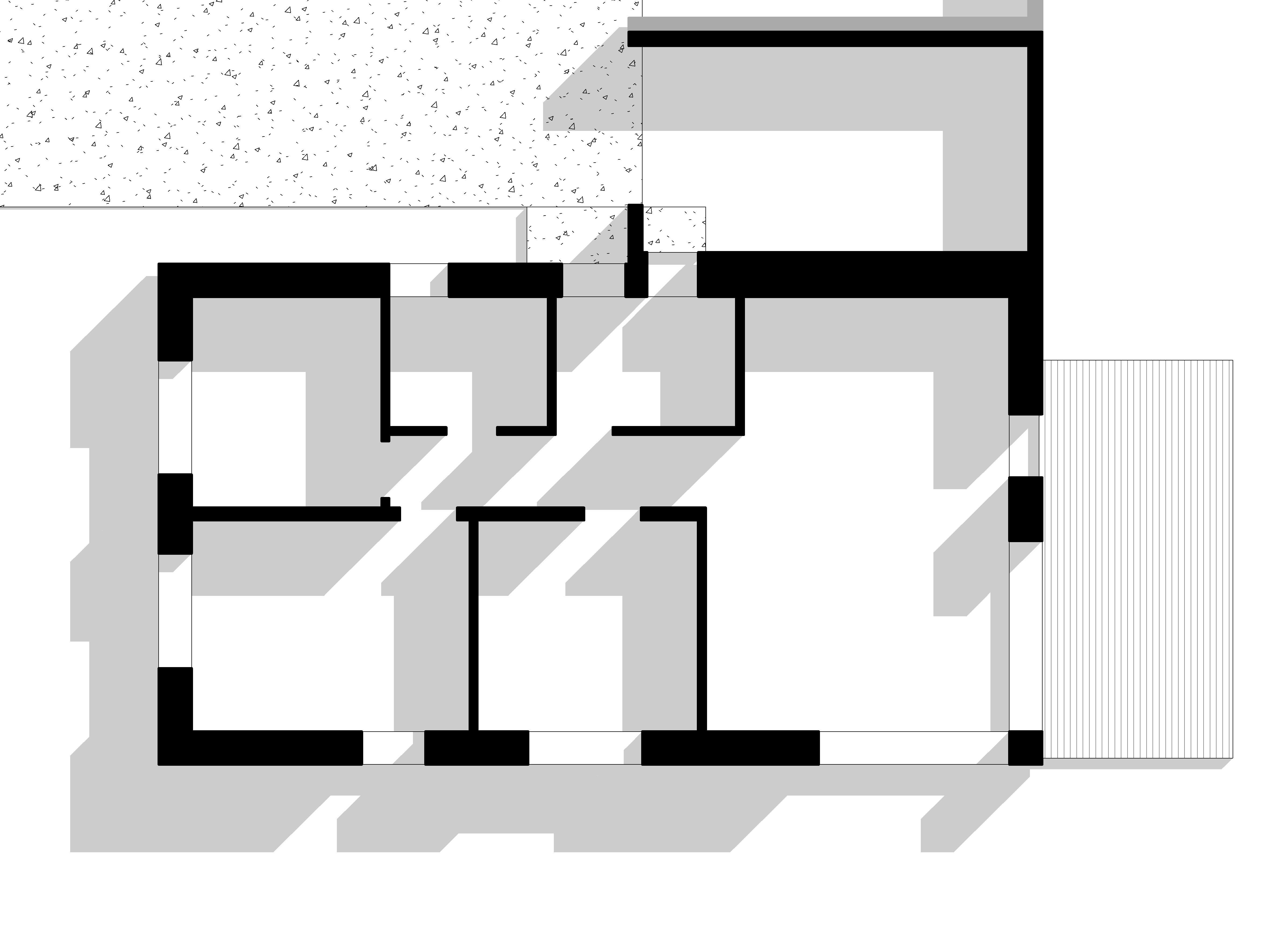 1a-planas-1jpg