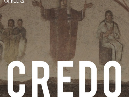 Welcome to the CREDO Blog!