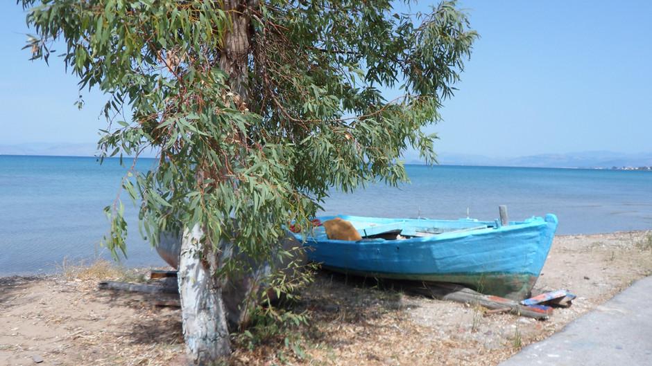 Corfu Blog: Covid 19, Holidays & Charities.