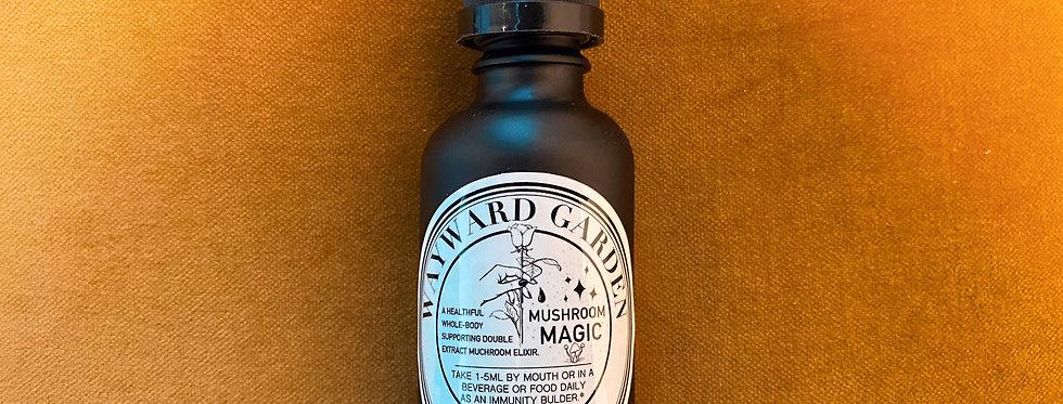 Mushroom Magic Elixir