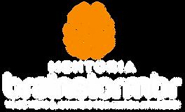 novo logo brainstormbr lançamento.png