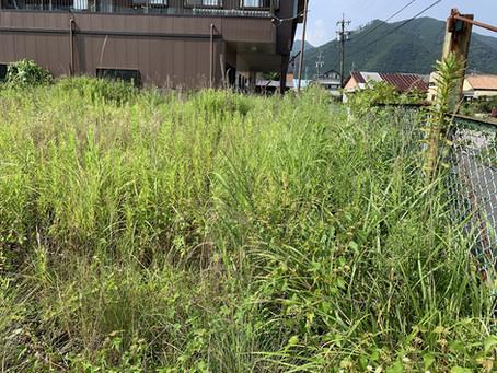 お盆前の草刈り作業