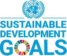 global-goals_edited.jpg