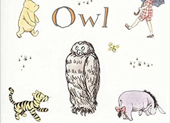 Winnie-the-Pooh and Owl