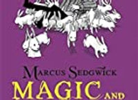 Magic and Mayhem (Raven Mysteries)