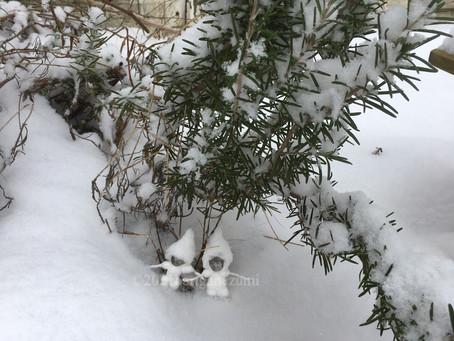 もしも、雪遊びする、小人の兄弟がいたら。