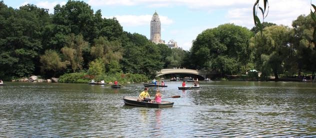 Explain that picture: Central Park 07.08.2009