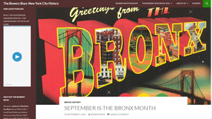 New York Infoblog Blog BB Bronx