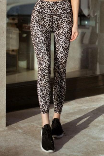 Cheetah Print Yoga Pants