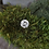 Thumbnail: Premium Colorless DEF/VVS1 Round Brilliant Cut Moissanite Loose