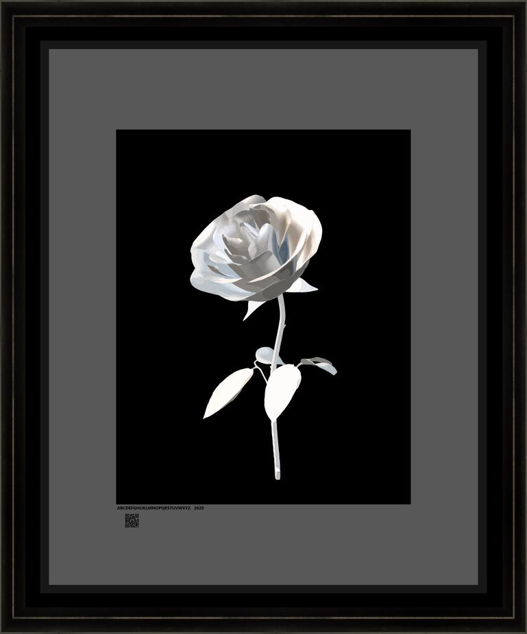 rosesbLSIdv16x20bfr.png