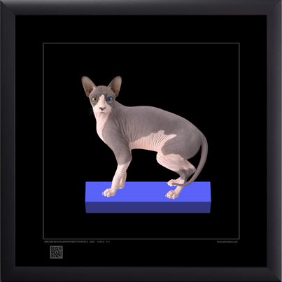 catop9152021s12x12bfr.png