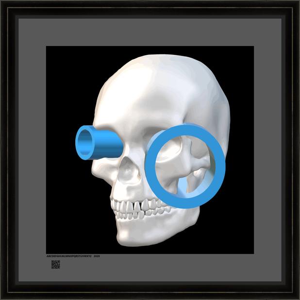 skullwwbcv16x16BFR.png