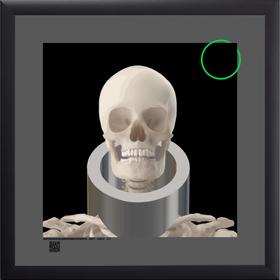 skullwrng412021s12x12bfrt.png