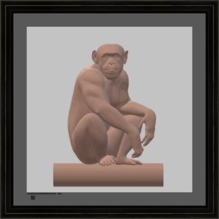 hominidbrolgv24x24BFR.png